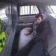 Dostal sa z pút a chcel podpáliť policajné auto. Jeho nekalé úmysly však prekazila karma