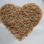 Nie je ryža ako ryža. Video, ktoré odhaľuje šokujúce praktiky pašerákov