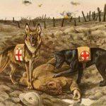 Vojaci uprostred zúriacej vojny zastavili boje, aby pochovali svojich kamarátov
