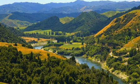 Whanganui_River