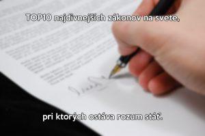 zkony_zizilky