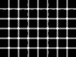 TOP10 šialených optických ilúzií, ktoré ťa dostanú – 2. časť