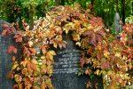 Zvláštne zvyky našich predkov po smrti blízkeho