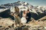 Netradičné svadobné fotografie, ktoré ťa rozosmejú