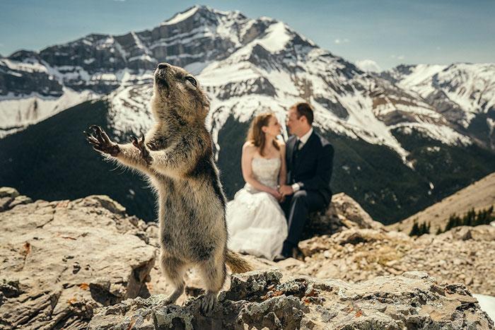 Netradičné svadobné fotografie