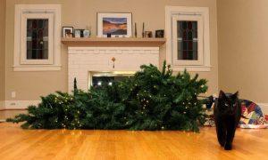 pokaziť Vianoce