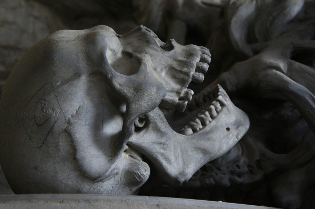 skull-476740_1280