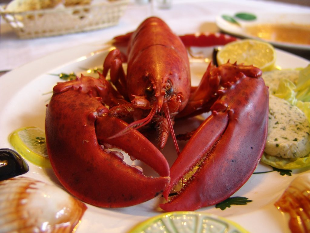 lobster-752705_1280