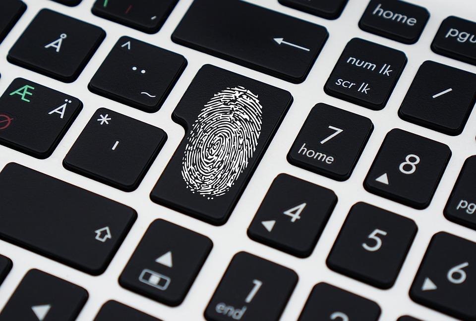 data_fingerprints