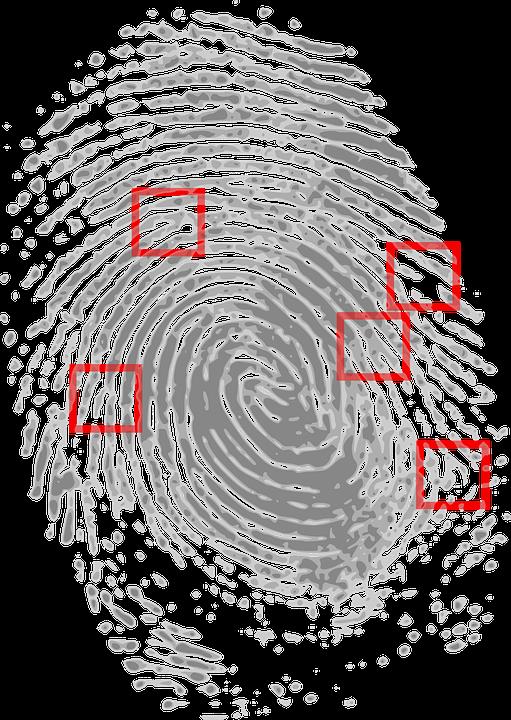fingerprint-146242_960_720