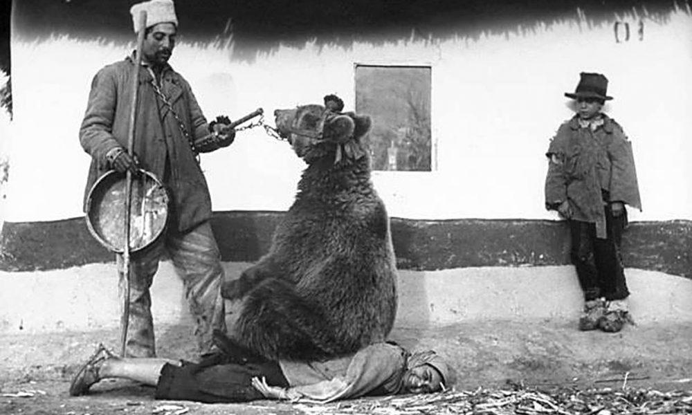 Medveď ako masér, či presun budovy: 10 historických fotografií