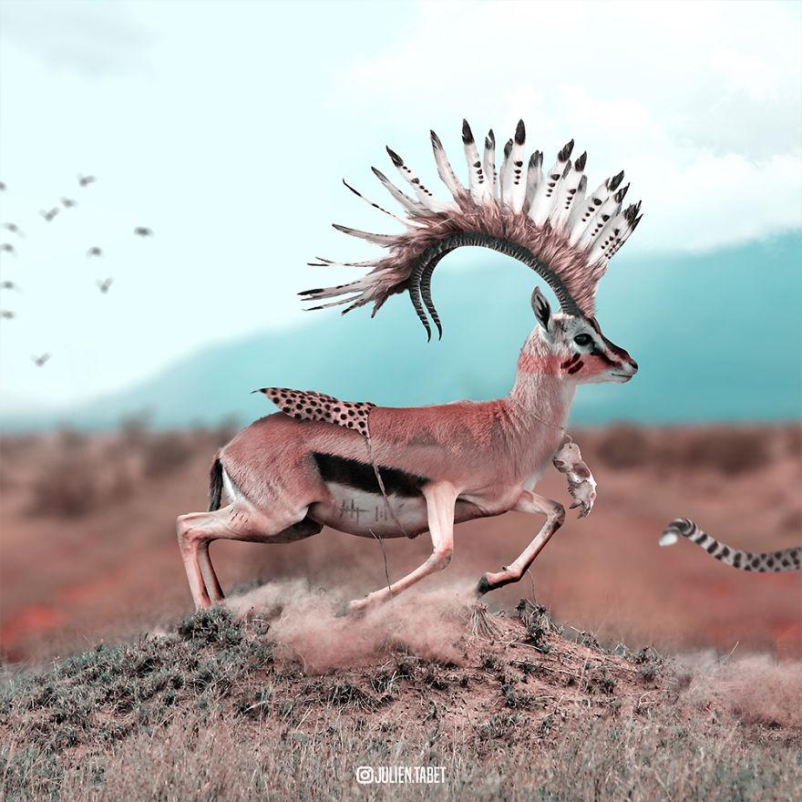 zvierata_ked_nepoozerame_6