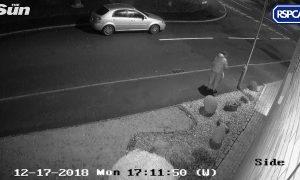 Extrémne smuté video: Muž vyhodil psa z auta uprostred ulice