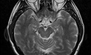 10+ nečakaných fotografií (nielen) z röntgenu, ktoré nevidíme každý deň