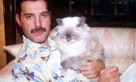 Freddie Mercury na súkromných fotografiách tak, ako ho svet nepoznal