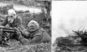 Prvá svetová vojna: Do vinobrania doma