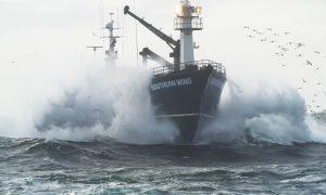 Najnebezpečnejšia profesia sveta: Prečo ročne prídu o život stovky lovcov krabov?