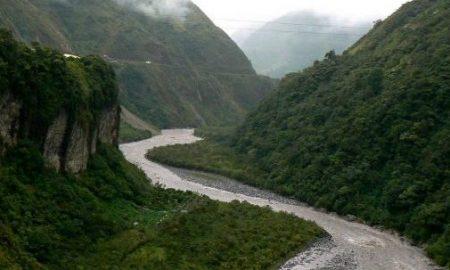 rieky