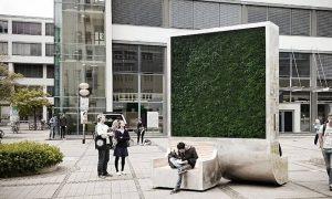 Mestské lavičky, ktoré absorbujú toľko znečistenia ako 275 stromov? V Londýne sú realitou