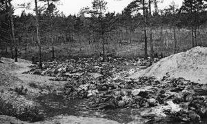 katynský les
