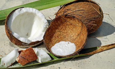 Prečo ťažiť drevo, keď máme kokosové šupiny, ktoré sú odolné voči ohňu?