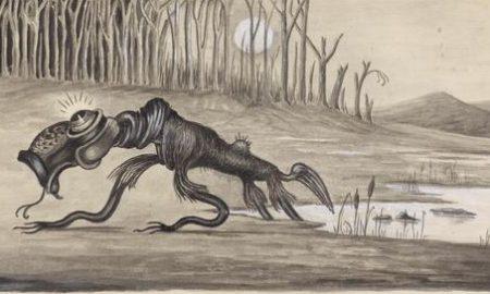 Počuli ste už otajomnom zvierati snázvom bunyip?