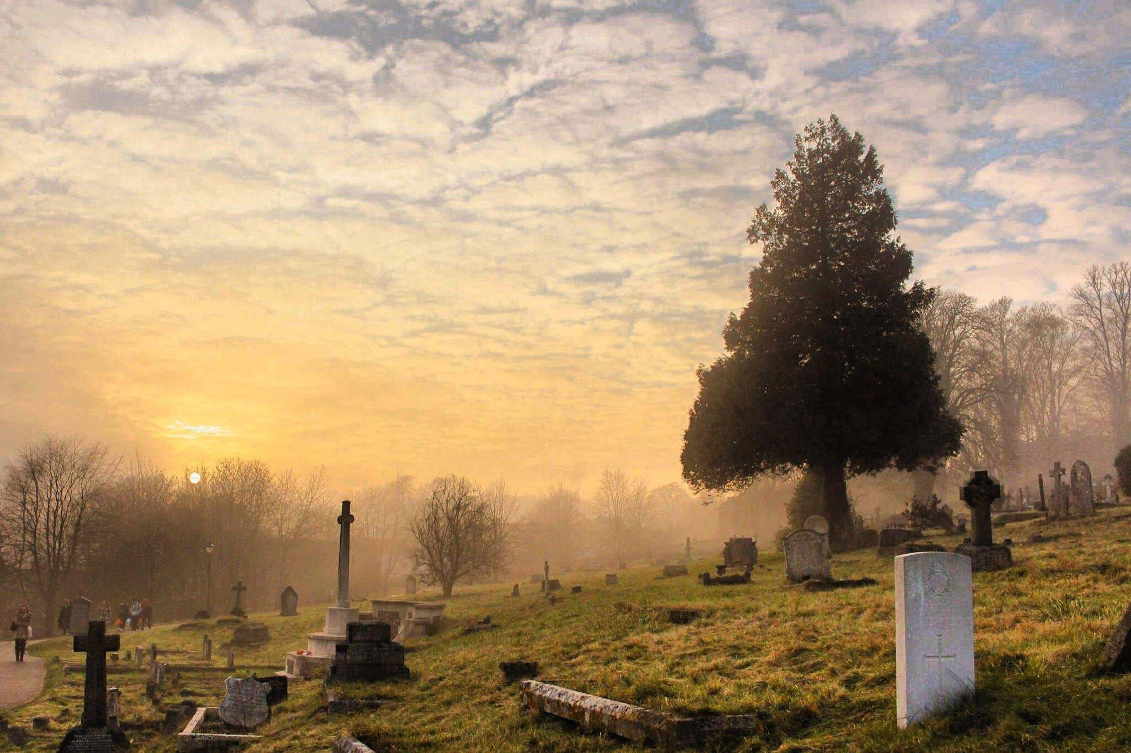 Prekliatie cintorínu Pri čiernej nádeji 1. časť