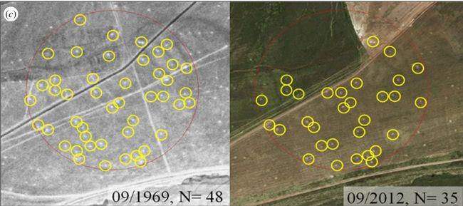 Satelity počas studenej vojny sledovali rakety.. a svišťov?