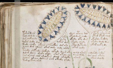 vojničov rukopis