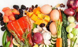 základy výživy