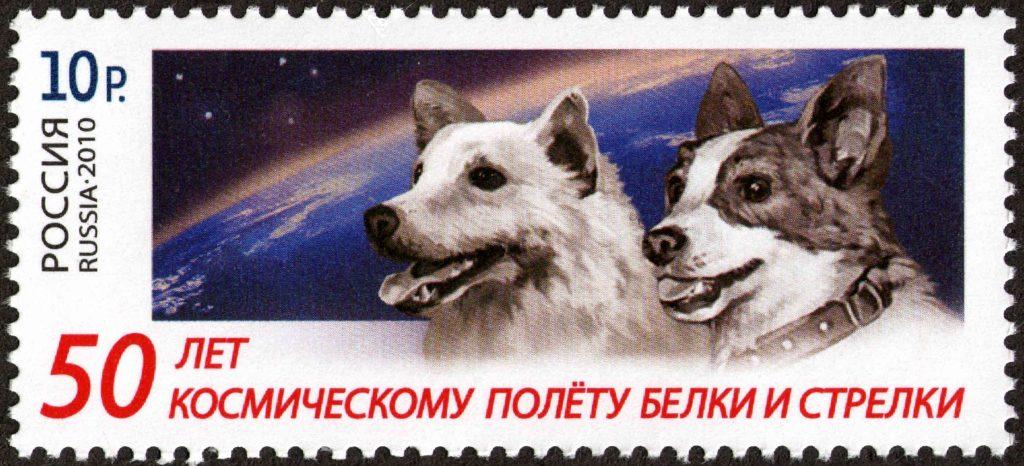 Pred 60 rokmi psí kozmonauti Belka a Strelka pripravili Gagarinovi cestu