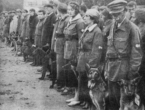 Zvrátenosť, alebo genialita? Ako Rusi počas vojny využívali protitankové psy